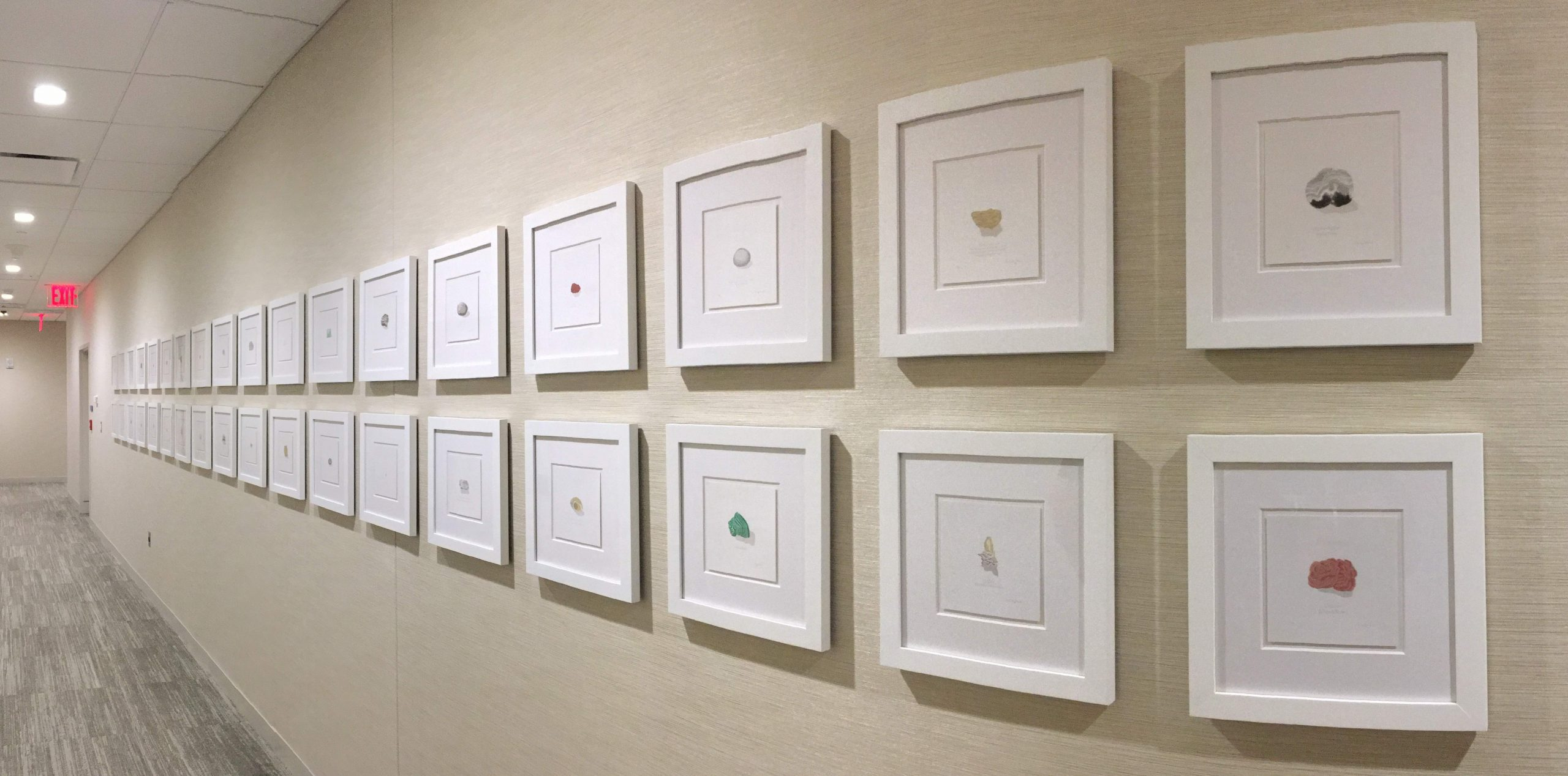 Memorial Sloan Kettering Art Collection, Curated by Cade Tompkins Projects